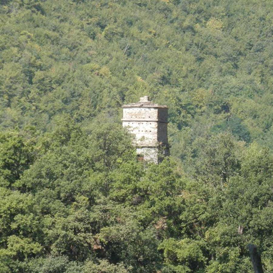 Torre delle colombe